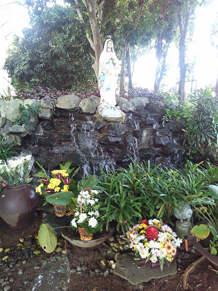 Birthday Celebration of Mama Mary